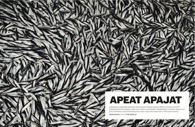 536af-image-11-2011_apeat_apajat1-kukkaranta